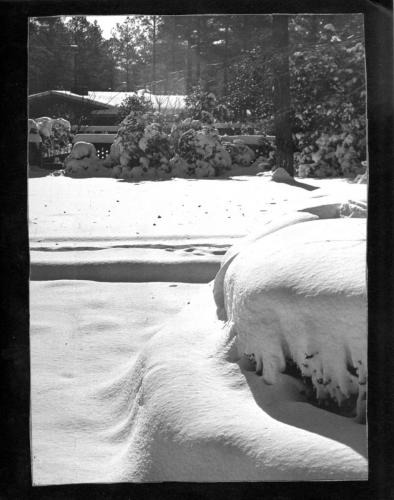 A freak March snowfall in Columbia, SC, 1974